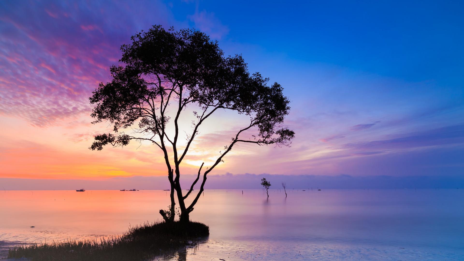 природа озеро деревья небо облака закат  № 1249602 бесплатно