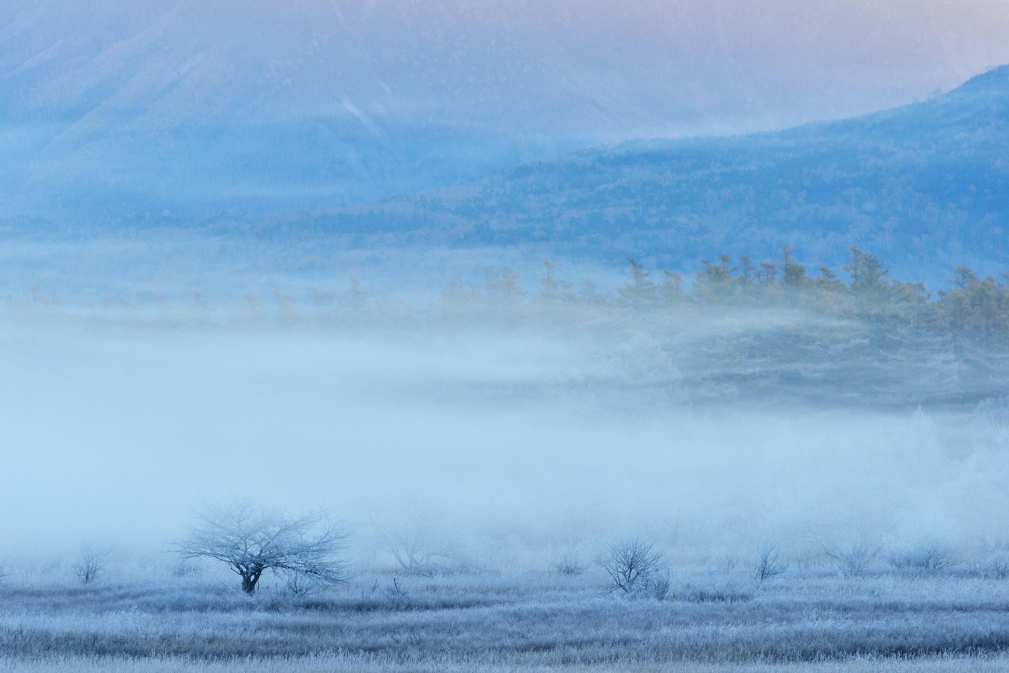 горы туман обои