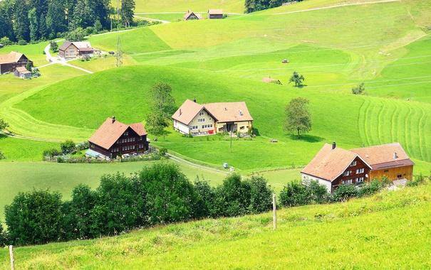 Фото обои Швейцария, поля, домики, Trogen, зелень, деревья, трава