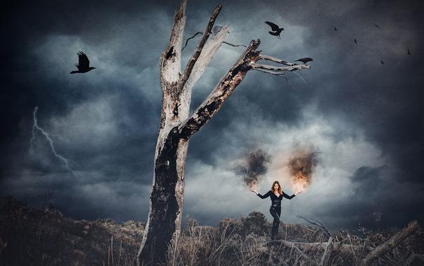 Фото обои девушка, птицы, дерево, огонь, молния