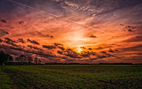 Фото обои поле, небо, закат