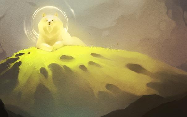 Фото обои трава, взгляд, свет, гора, Медведь