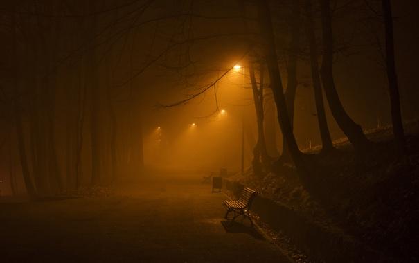 Фото обои ночь, город, улица, скамья