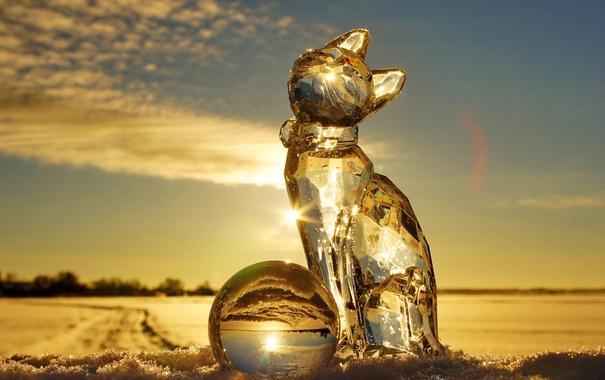 Фото обои зима, кошка, кот, солнце, лучи, свет, снег