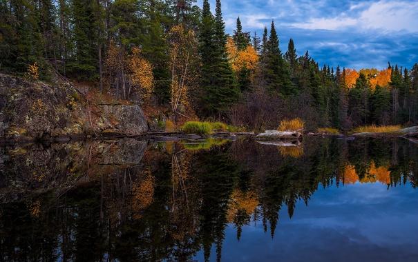 Фото обои осень, деревья, природа, отражение, река