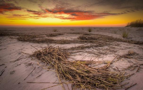 Фото обои закат, пейзаж, пляж