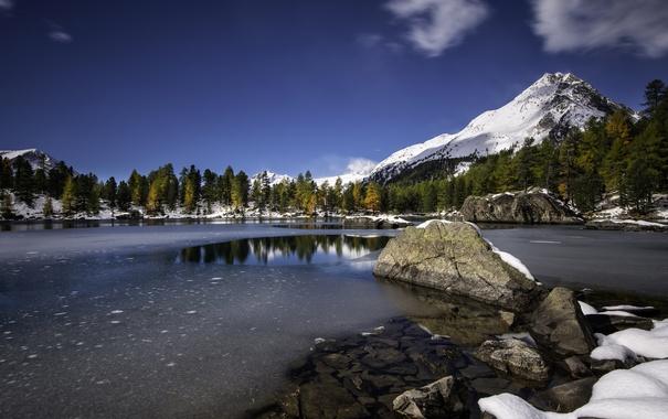 Фото обои Швейцария, озеро, снег, горы, кантон Граубюнден, деревья, осень
