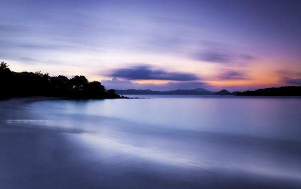 Фото обои море, пляж, деревья, ночь