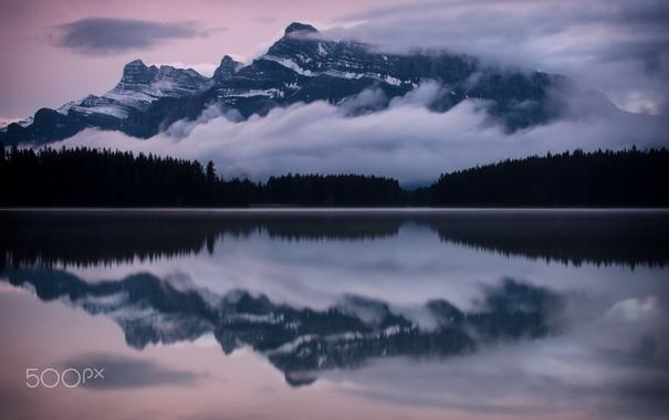 Фото обои лес, вода, отражения, горы