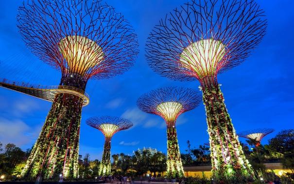 Фото обои небо, мост, огни, парк, люди, вечер, Сингапур