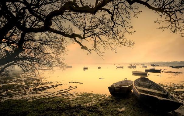 Фото обои туман, озеро, лодки, утро