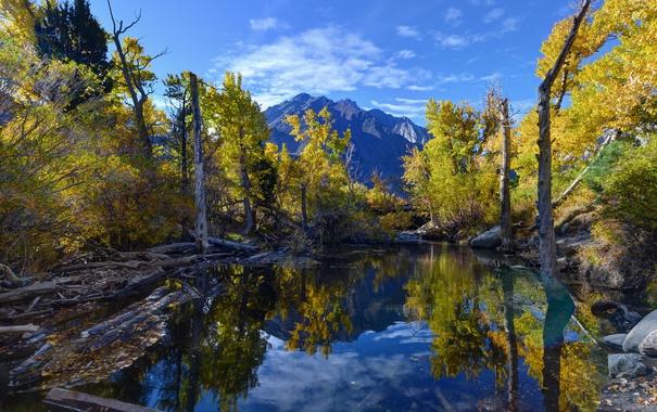 Фото обои Convict Lake, Reflections, Eastern Sierra, Fall Colors