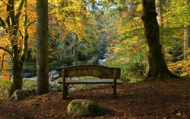 Фото обои Autumn, Scotland, Hermitage