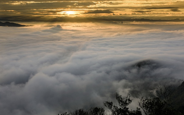 Фото обои небо, ночь, туман