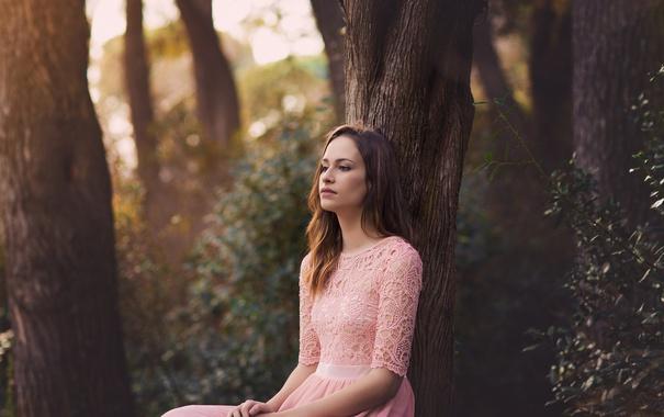 Фото обои взгляд, девушка, задумчивость, лицо, дерево, платье