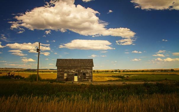 Фото обои ферма, дом, линии электропередачи, поле, куст, солнце, небо