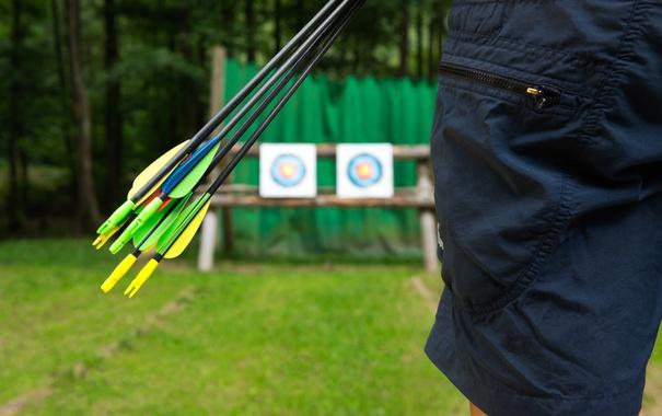 Фото обои arrows, archery, target