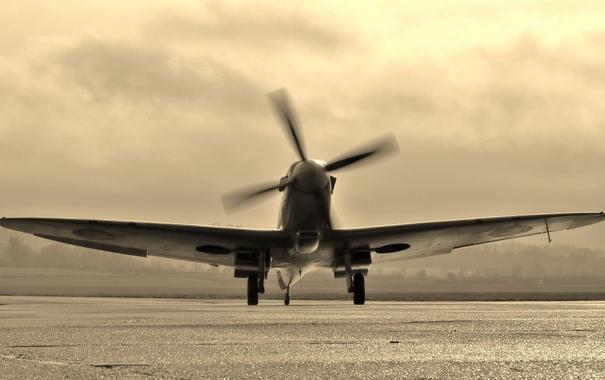 Фото обои самолет, британский, учебно-тренировочный, Spitfire Tr.9