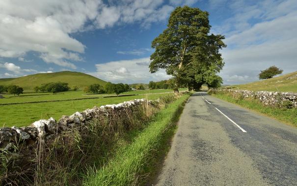 Фото обои дерево, забор, горы, дорога, небо, камни
