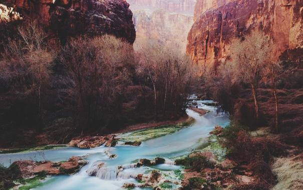 Фото обои river, trees, canyon, sunlight, cliffs