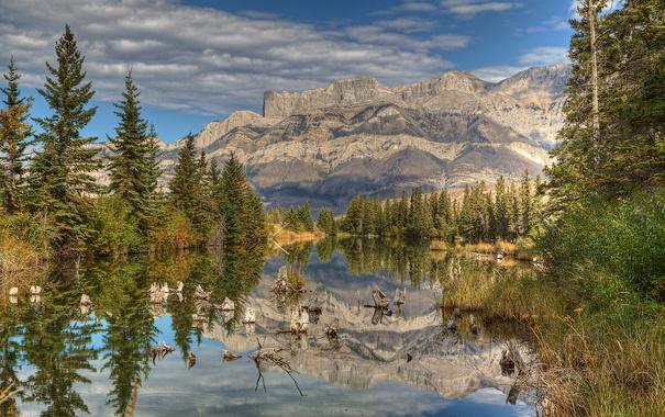 Фото обои небо, облака, деревья, горы, озеро, ель