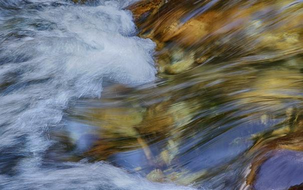 Фото обои поток, ручей, река, вода