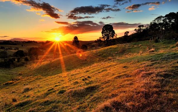 Фото обои облака, трава, деревья, холм, солнце