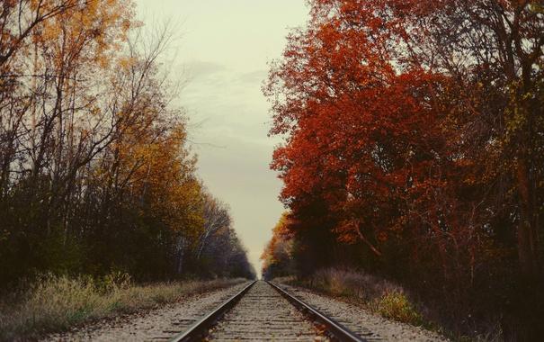 Фото обои sky, trees, autumn, railway, foliage