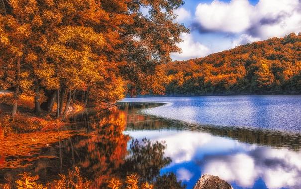 Фото обои осень, лес, листья, деревья, отражение, река, рябь