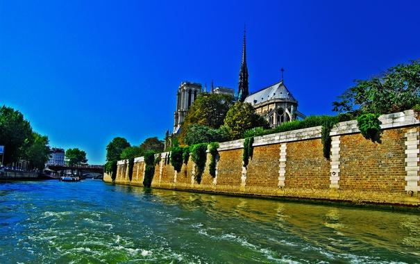 Фото обои деревья, мост, река, Франция, Париж, Сена, собор парижской богоматери