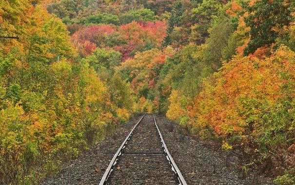 Фото обои осень, склон, природа, дорога, деревья, рельсы, лес