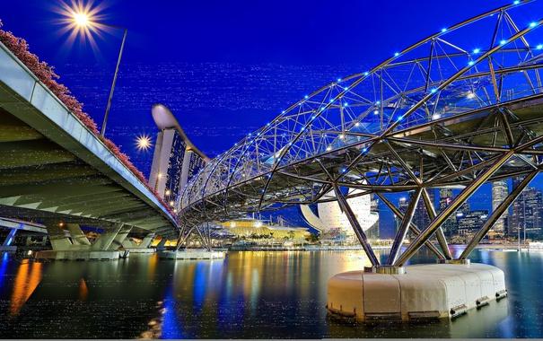 Фото обои цветок, мост, чаша, опора, Азия, Сингапур, отель