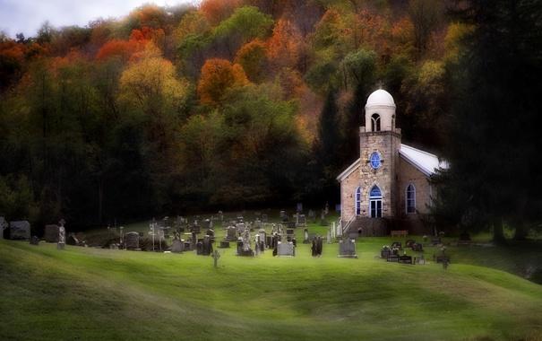 Фото обои поле, осень, лес, трава, деревья, могилы, листва