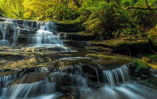Фото обои Australia, waterfalls, sunlight, long exposure, Blue Mountains, Leura Cascades