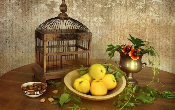 Фото обои листья, яблоки, посуда, орехи, натюрморт