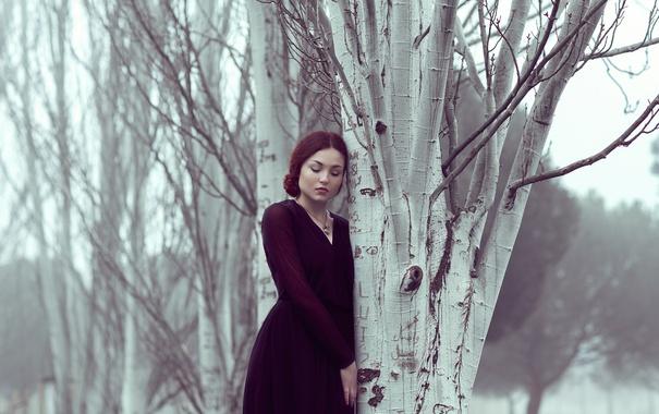 Фото обои девушка, деревья, задумчивость, лицо, волосы, платье