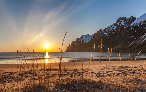 Фото обои волны, зеркало, отражение, горы, куст, восход солнца, пляж