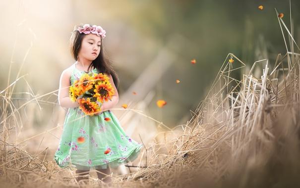 Фото обои лето, цветы, девочка