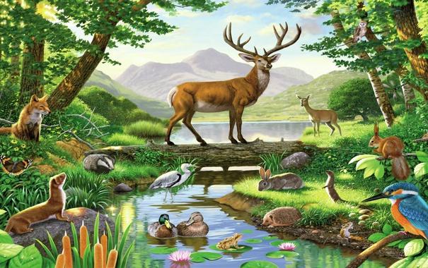 Фото обои лес, птицы, рисунок, картина, олень