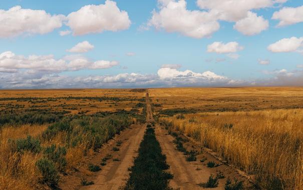 Фото обои дорога, небо, облака, поля, горизонт, фермы