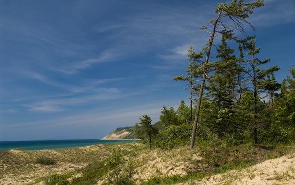 Фото обои берег, деревья, трава, небо, море, песок