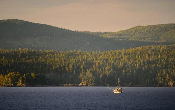 Фото обои lake, hills, boat, sunny, fishermen