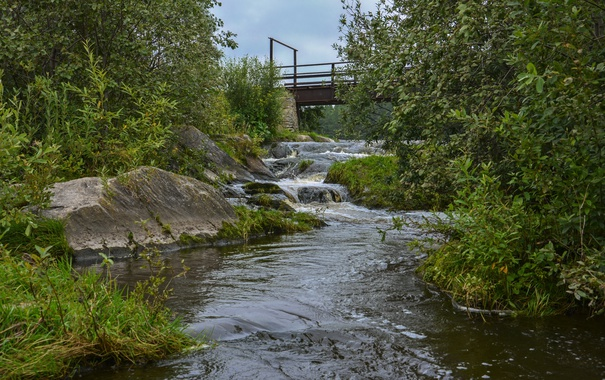 Фото обои трава, вода, мост, природа, река, ручей, камни