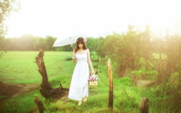 Фото обои девушка, цветы, зонт