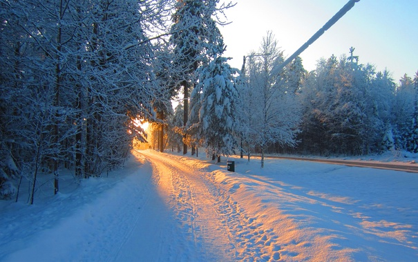 Фото обои иней, дорога, солнце, Зима