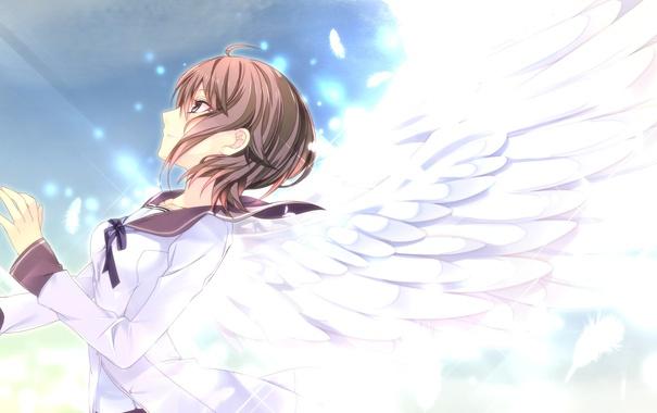 Фото обои Smile, Female, Game CG, Manyako (Mohumohu), Negai no Kakera to Hakugin no Agreement, Hajiro Mina
