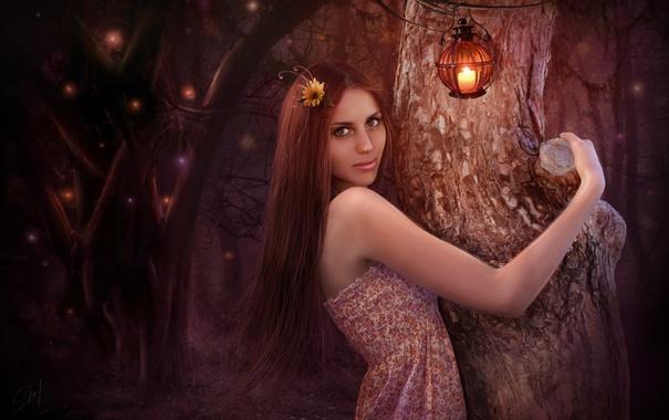 Фото обои лес, деревья, ночь, улыбка, арт, шатенка, фонарики