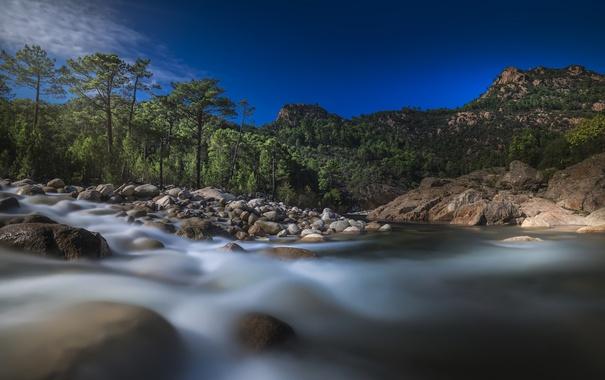 Фото обои деревья, горы, река, камни, Франция, France, Корсика