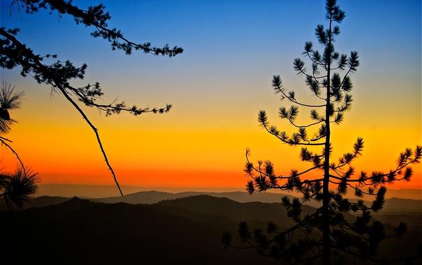 Фото обои небо, закат, горы, дерево, силуэт