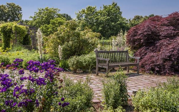 Фото обои деревья, цветы, скамейка, Германия, сад, дорожка, беседка